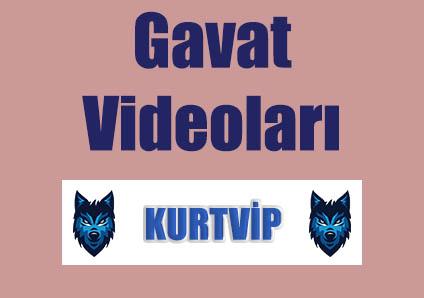 Gavat Versiyon